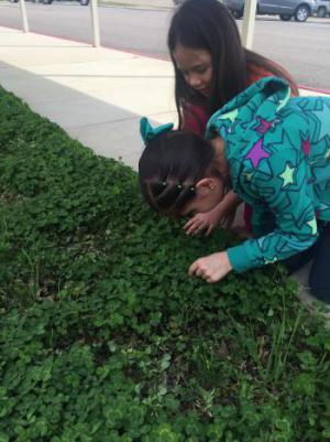 These girls are determined to find a four leaf clover!