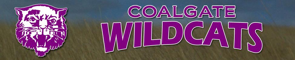 Coalgate Banner