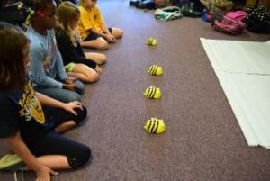 Bee Bots and Logical thinking go hand in hand