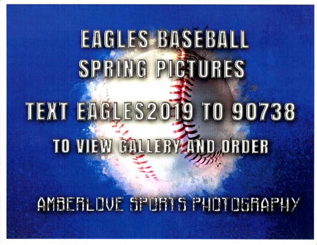 2019 Baseball Pictures Info