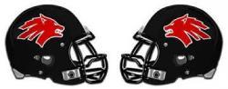 LL Helmets