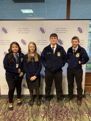2019 Jr. Quiz Team LDE