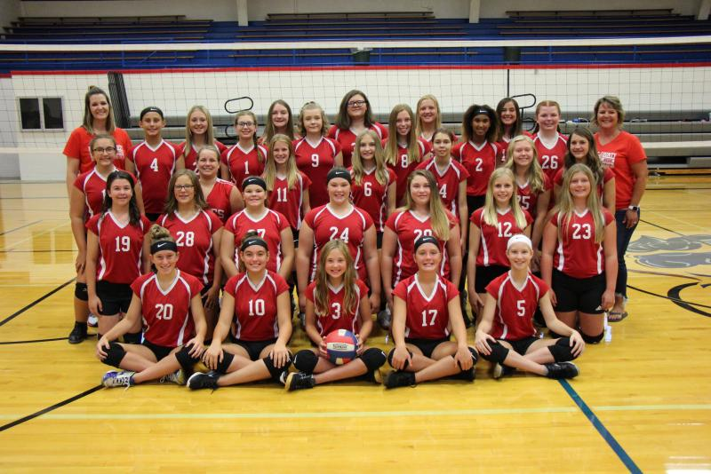 2020 JH Volleyball