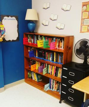 Our classroom library is ready for the year ahead!