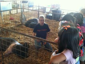 We learned about pigs.