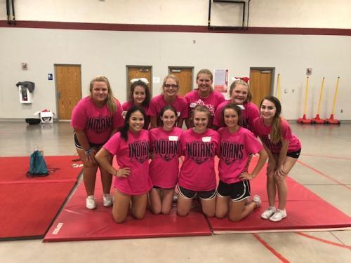 Cheer 2018 Pink Shirts