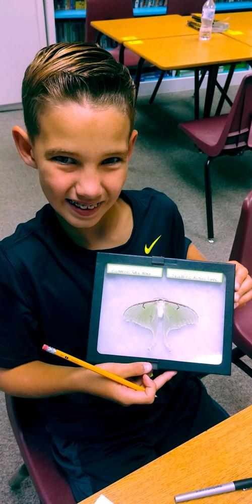 5th grade student winner of bug contest