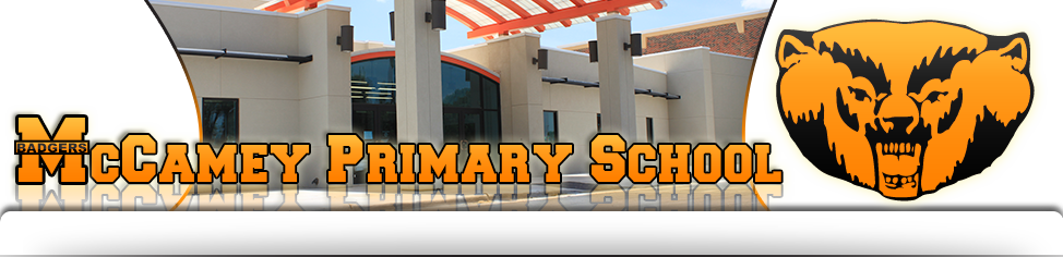 Primary Banner