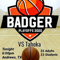 Thumbnail Image for Article Badger Basketball Playoff Game