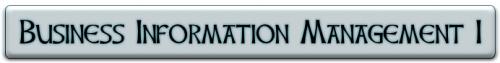 Business Information Management I