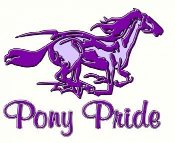 Pony Pride image