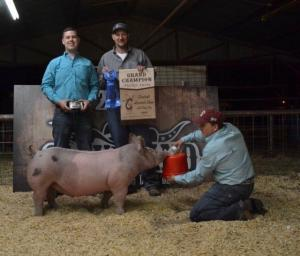 Cameron Luckey won Grand Champion Market Swine.