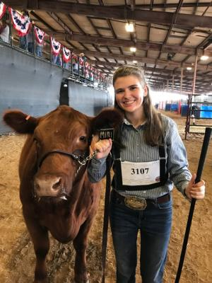 Caitlyn won her Red Angus class!!