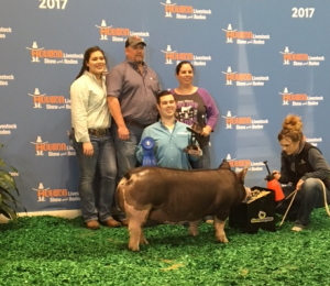 Cameron Luckey placed 1st with his Berkshire gilt.