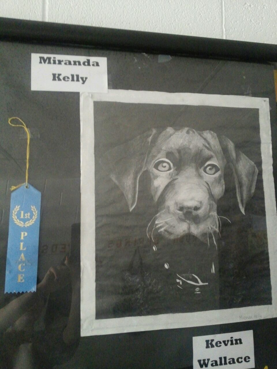 Miranda Kelly - 1st place Rock Island Arts Festival