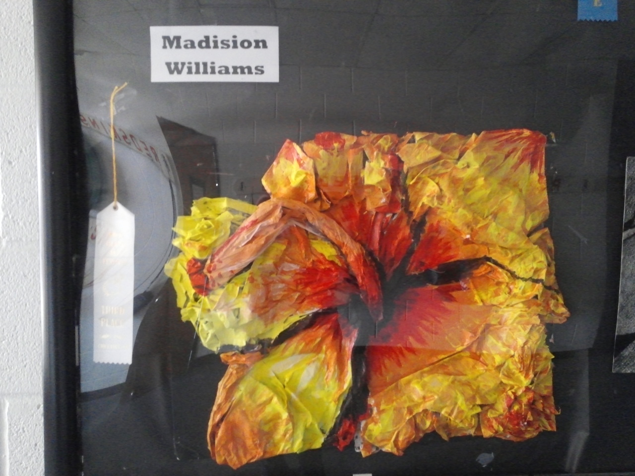 Madision Williams - 3rd place Rock Island Arts Festival