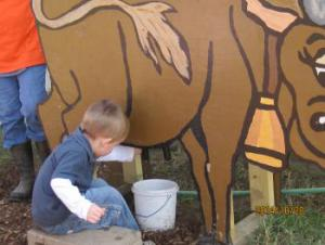 Mac trying the milking the cow thing at the pumpkin patch