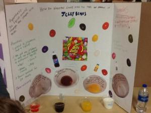 Noah Boen/ How do different liquids affect jelly beans?