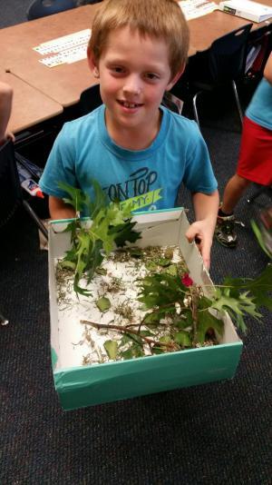Woodland habitat!