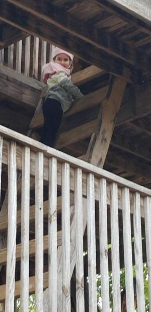 Climbing the treehouse at Happy Day Pumpkin Farm