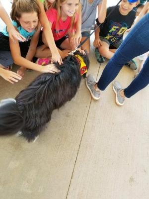 Petting the therapy dog