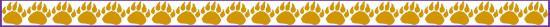 bear paw border