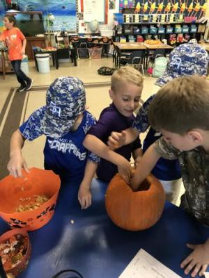 The students learn about parts of a pumpkin and its life cycle.