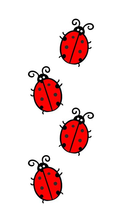 Ladybugs on a white background
