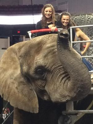 Chamber Chorale at the Circus