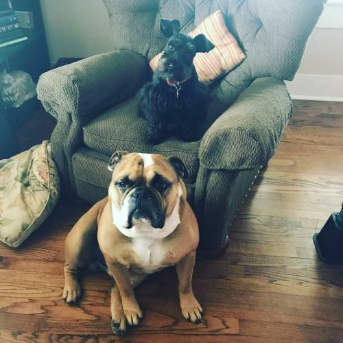 Winnie Lou and Chester
