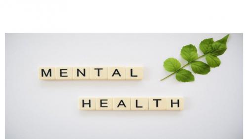 mental health button