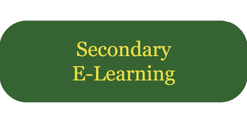 secondary e-learning