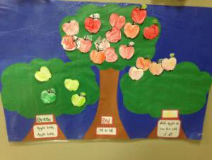 Our class apple graph.