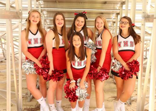 2019-20 Cheer Team
