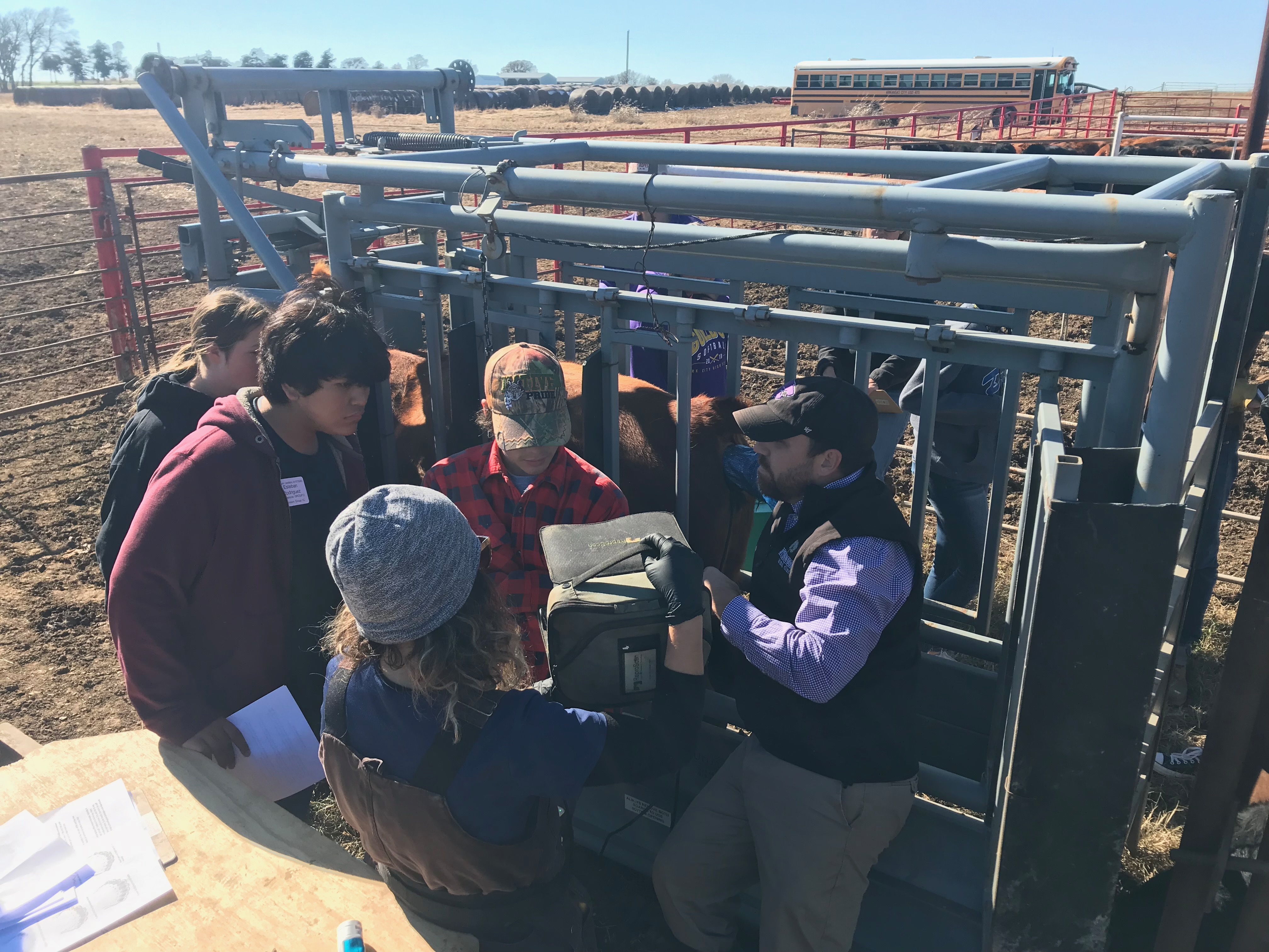 Student learn from veterinarian Dr. Carson Abrams at our Fall SAE Day.
