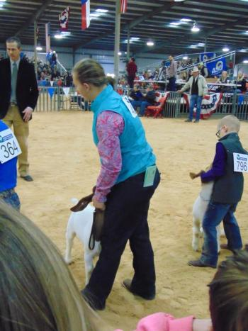 Addy Kimbro, 6th grader at Kelton ISD, competed with her goat, Flyer, at the Wheeler County Jr. Stock Show and the San Angelo Stock Show.  Flyer won Grand Champion at the WCJLS and Addy won Jr. Showmanship.  Addy went on to San Angelo and placed 7th out of approximately 42 entries.  She received Premium Money for her placing.