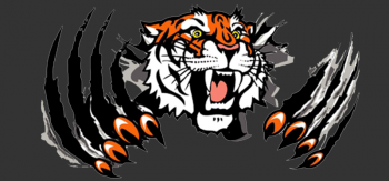 Clawing Tiger Image