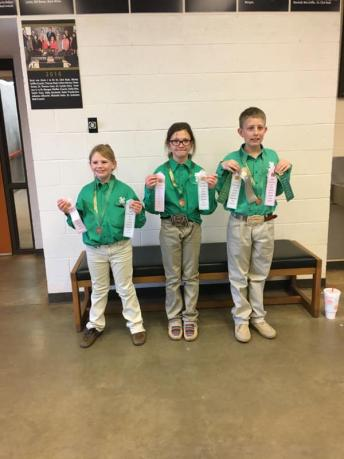 State Horse Judging - Junior team 3rd overall, 5th placing and 6th reasons. Team consisting of Cenzie white, Jacee Maness and Bronk Embry