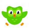 Image that corresponds to Duolingo