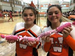 JH Martinsville pink game and pep rally