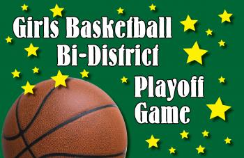 Girls Basketball Bi-District Playoff Game