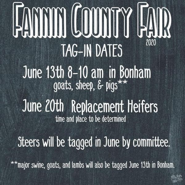 Fannin County Fair