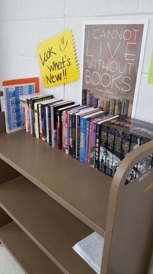 New books for students to read...thanks to Donors Choose grant