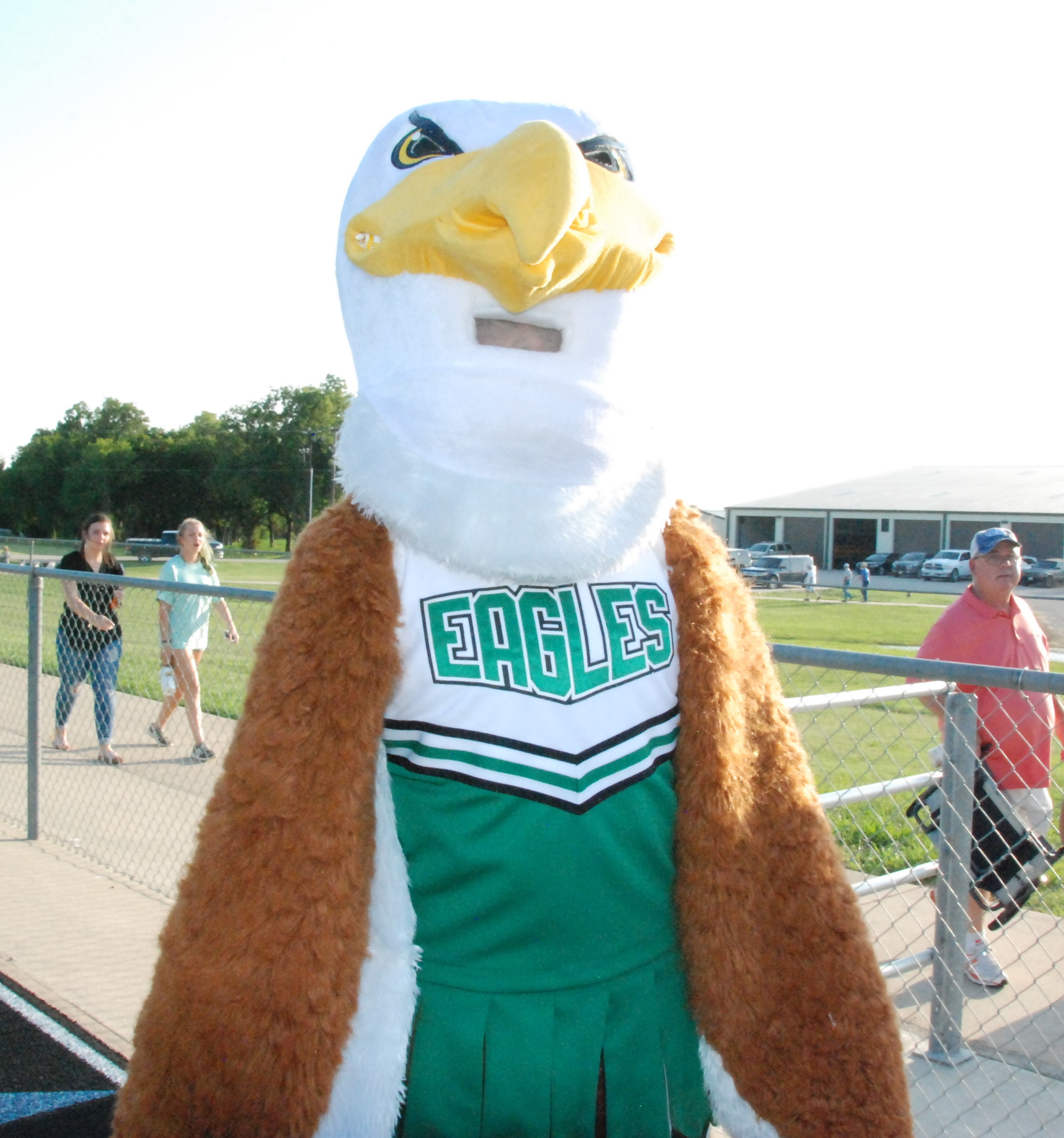 Iggy the Eagle, Valley View mascot