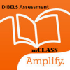 Image that corresponds to mCLASS Assessment (DIBLES)