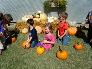 Hanging out with our new pumpkins