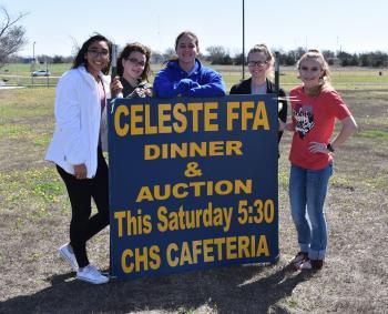 FFA Auction