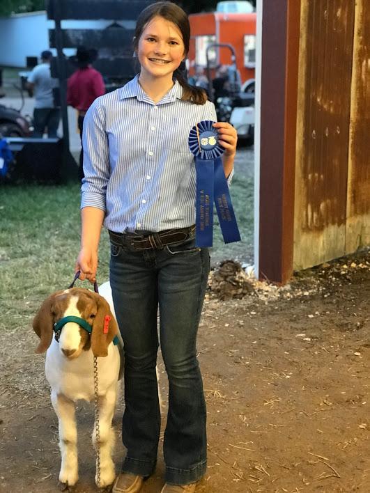 Hunt County Fair 2019 - Goats