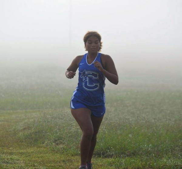 XC Teams Have Impressive Showing at Local Meets