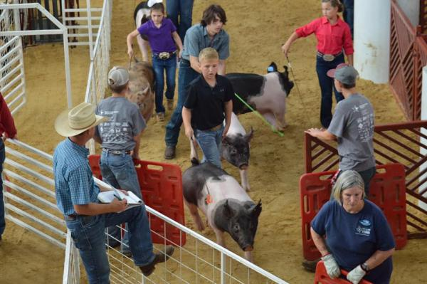 State Fair of Texas Results (Oct. 1-20)